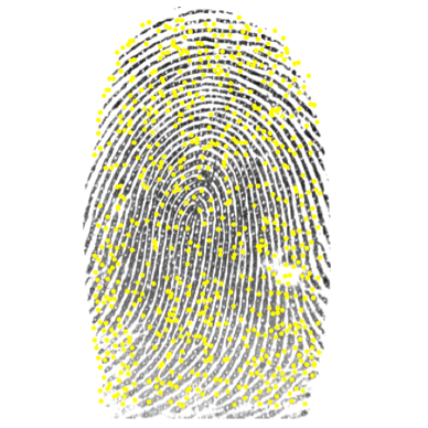 Using image processing to spot differences in fingerprints